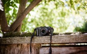 Picture background, camera, Panasonic GF1, Olympus 45mm f1.8