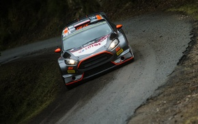 Picture Ford, Turn, WRC, France, Rally, Rally, Fiesta, Roadside, FAS, Robert Kubica, Tour de Corse