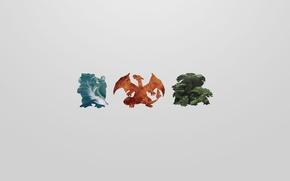 Picture grass, water, fire, flame, grass, water, pokemon, pokemon, charizard, venusaur, charizard, blastoise, blastoise, venusaur