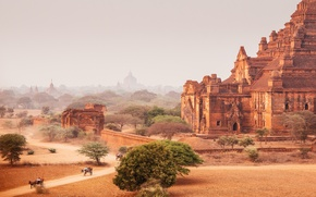 Picture road, the sky, dust, dry, Myanmar, temples, Bagan, Horse cart, Photo Of Dhammayangyi Temple