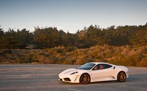Picture white, the sky, grass, trees, shadow, white, ferrari, Ferrari, side view, F430, the Scuderia, f430 …