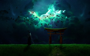 Picture the sky, birds, night, weapons, warrior, male, torii