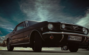 Picture car, mustang, ford, classic, fastback