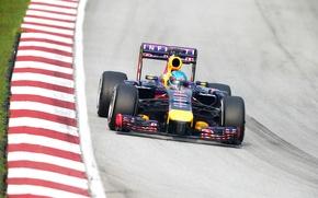 Picture Formula 1, Formula 1, Red Bull, Vettel