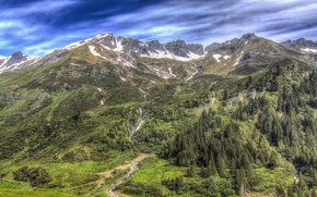 Picture forest, trees, landscape, mountains, HDR