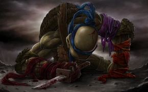 Picture blood, sword, katana, tears, teenage mutant ninja turtles, TMNT, Leonardo, Leonardo, teenage mutant ninja turtles