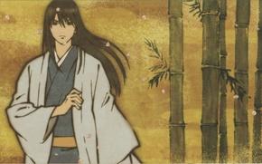Picture bamboo, petals, samurai, kimono, gintama, Gintama, silver soul, kotarou katsura, by hideaki sorachi
