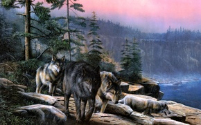 Wallpaper rock, the sky., trees, wolves
