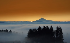 Picture forest, mountains, the city, lights, fog, the evening, mount Hood, Eastern Oregon
