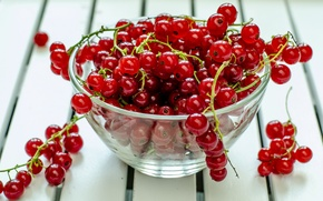 Picture berries, table, plate, red, currants