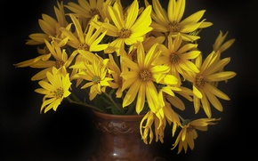 Picture yellow, a bouquet of flowers, the dark background