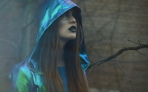 Picture girl, background, hair, makeup, hood