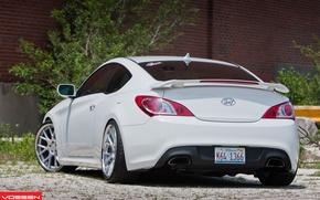 Picture Hyundai, Vossen, Genesis