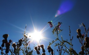 Picture the sun, heat, Summer, summer, sun