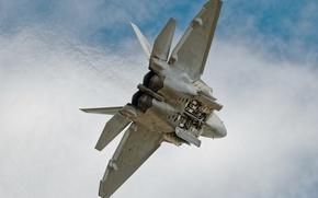 Picture flight, the plane, Transform jet