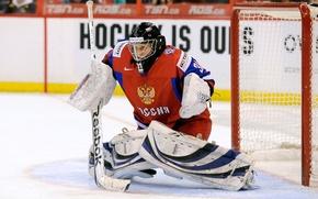 Picture gate, Olympics, Sochi 2014, Anna Prugova, Russian ice hockey player