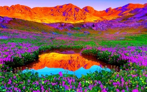 Picture the sky, sunset, flowers, mountains, lake, meadow