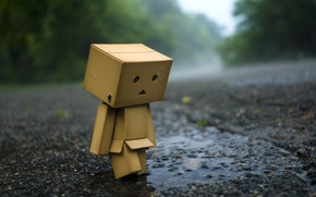 Picture asphalt, rain, mood, box, Wallpaper, puddle, man, wallpaper, danbo, danboard