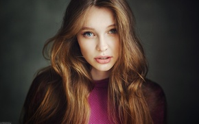 Picture look, girl, face, background, sweetheart, portrait, light, brown hair, beautiful, the beauty, studio, young, blue-eyed, …