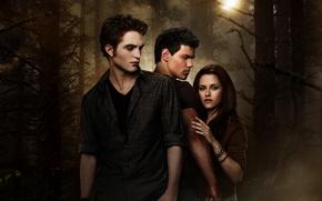 Picture Girl, Light, Moon, Fantasy, Kristen Stewart, Robert Pattinson, Darkness, 2009, The, Wolf, New, Vampire, Twilight, …
