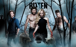 Picture forest, The series, actors, Movies, Bitten, Ask