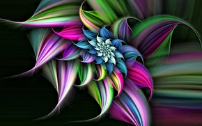 Picture flower, line, background, spiral, the volume