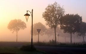 Wallpaper road, fog, signs
