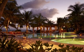 Picture palm trees, the ocean, the evening, pool