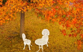 Picture autumn, leaves, trees, Park, table, chairs, Japan