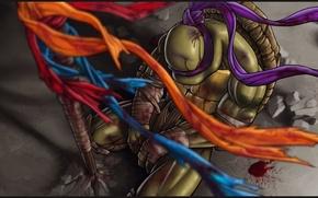 Picture fiction, hero, Teenage mutant ninja turtles, donatello