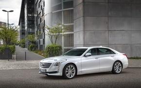Picture Cadillac, sedan, Cadillac, CT6