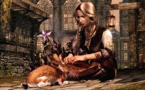 Picture girl, hare, warrior, skyrim, the elder scrolls v