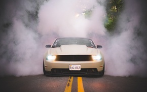 Picture tuning, smoke, Mustang, ford, tuning, front, stance, 2013, swglob, mustang 5.0