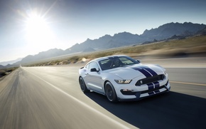 Picture Mustang, Ford, Shelby, GT350, 2016