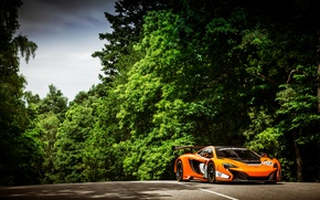 Picture McLaren, Auto, Road, Trees, Forest, Sport, Orange, Day, GT3, Supercar, Sports car, 650S