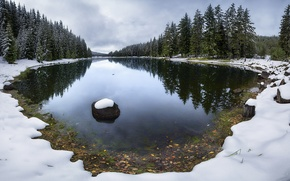 Wallpaper lake, snow, late, trees, autumn, forest
