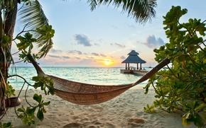 Wallpaper sand, sea, beach, tropics, palm trees, shore, summer, sunshine, beach, sea, ocean, paradise, vacation, palms, ...