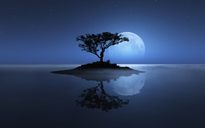 Wallpaper sea, the sky, the moon, tree, island