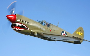 Picture the sky, flight, the plane, teeth, fighter, mouth, pilot, airbrushing