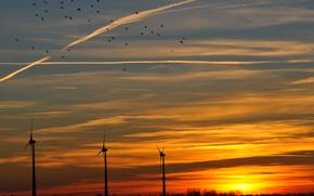 Wallpaper the sky, the sun, clouds, sunset, birds, orange, The evening, windmills