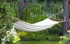 Picture FOREST, GRASS, WHITE, STAY, FLOWERS, GREEN, HAMMOCK, RELAX