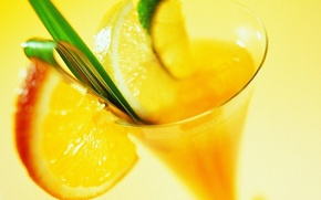 Picture macro, yellow, lemon, cocktail, glass, orange, lime, drink, leaf, slices