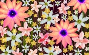 Picture Wallpaper, figure, petals, ornament, the application