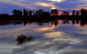 Picture the sky, trees, sunset, red, bright, clouds, surface, reflection, river, blue, The evening, twilight