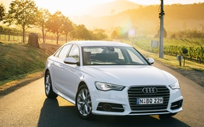 Picture 2015, quattro, AU-spec, sedan, Quattro, S line, TDI, Sedan, Audi, white, Audi