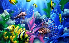 Picture sea, fish, underwater world