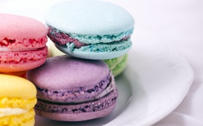 Picture food, cookies, different, color