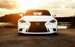 Picture Lexus, white, front, vossen wheels, IS F sport