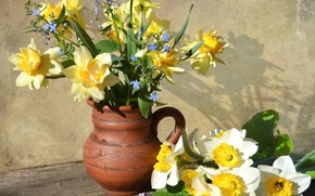 Picture bouquet, pitcher, daffodils, forget-me-nots