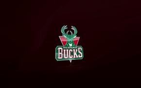 Picture Wisconsin, Basketball, Deer, Background, Logo, NBA, The bucks, Milwaukee, Milwaukee Bucks
